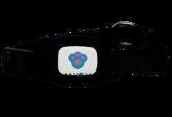 GPS ошейник для собак, черный - фото 5214