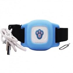 GPS ошейник кошек и собак, голубой - фото 5216
