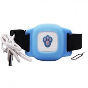 GPS ошейник кошек и собак, голубой